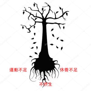 漢方体調の枯れ木