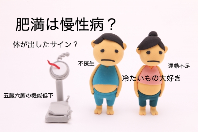 漢方-ダイエット-肥満