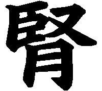 漢方-五臓六腑-腎-文字