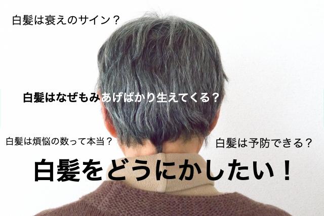 漢方-白髪-予防